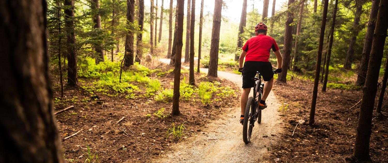 Explore SLovenia, Mountain Biking